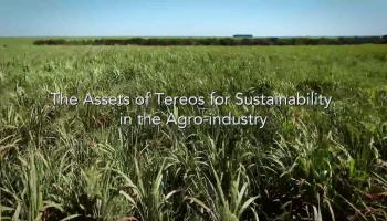 The Assets of Tereos for Sustainability in the Agro-industry