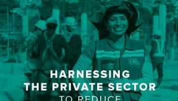 Private sector and Development number 33 : Harnessing the private sector to reduce gender inequality