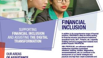 Propulse and financial inclusion sector